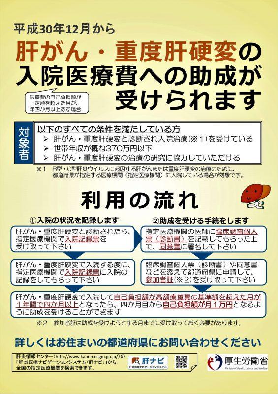 肝がん・重度肝硬変リーフレット【厚生労働省HP用20180821】